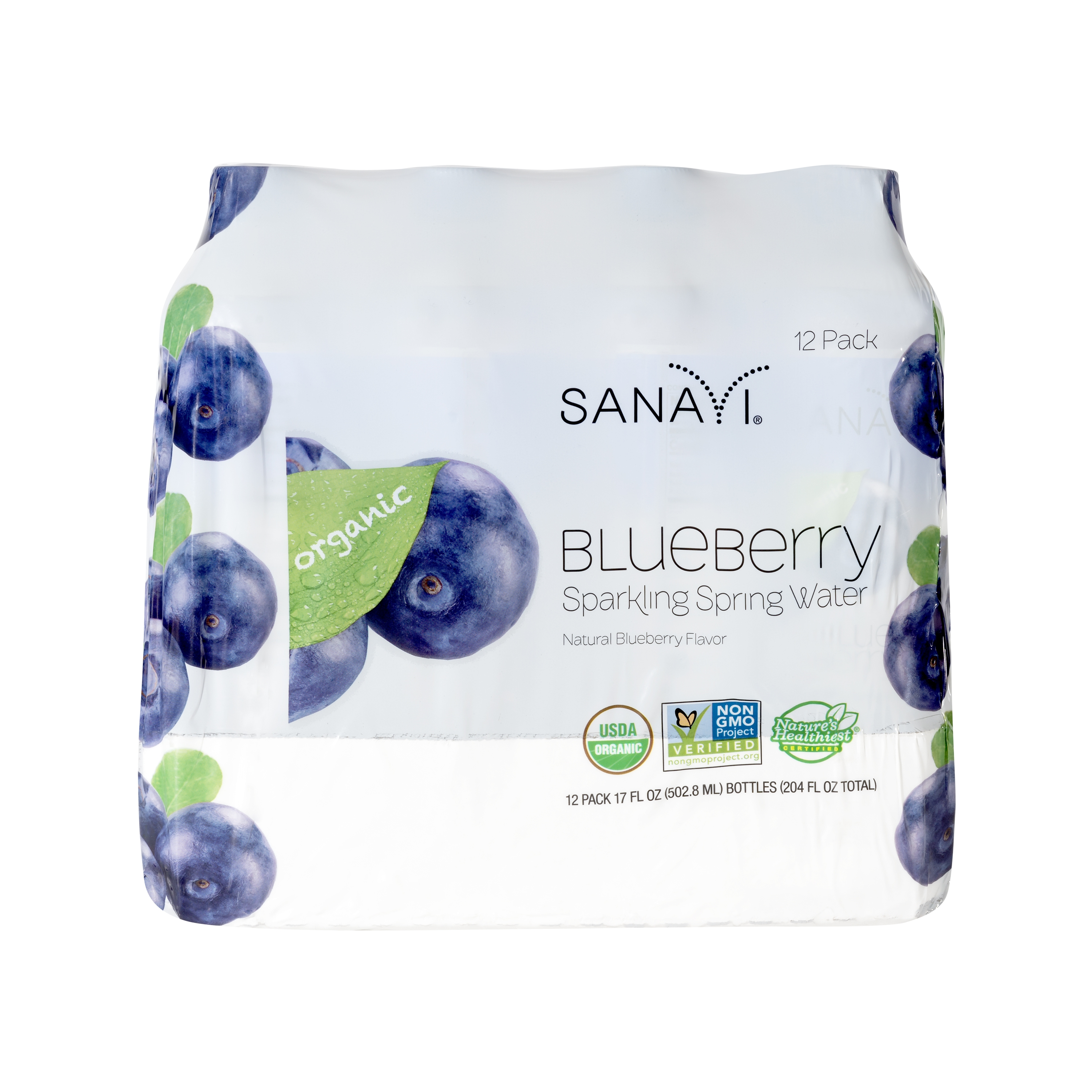Sanavi Blueberry Sparkling Spring Water, 17 oz (12 Pack)