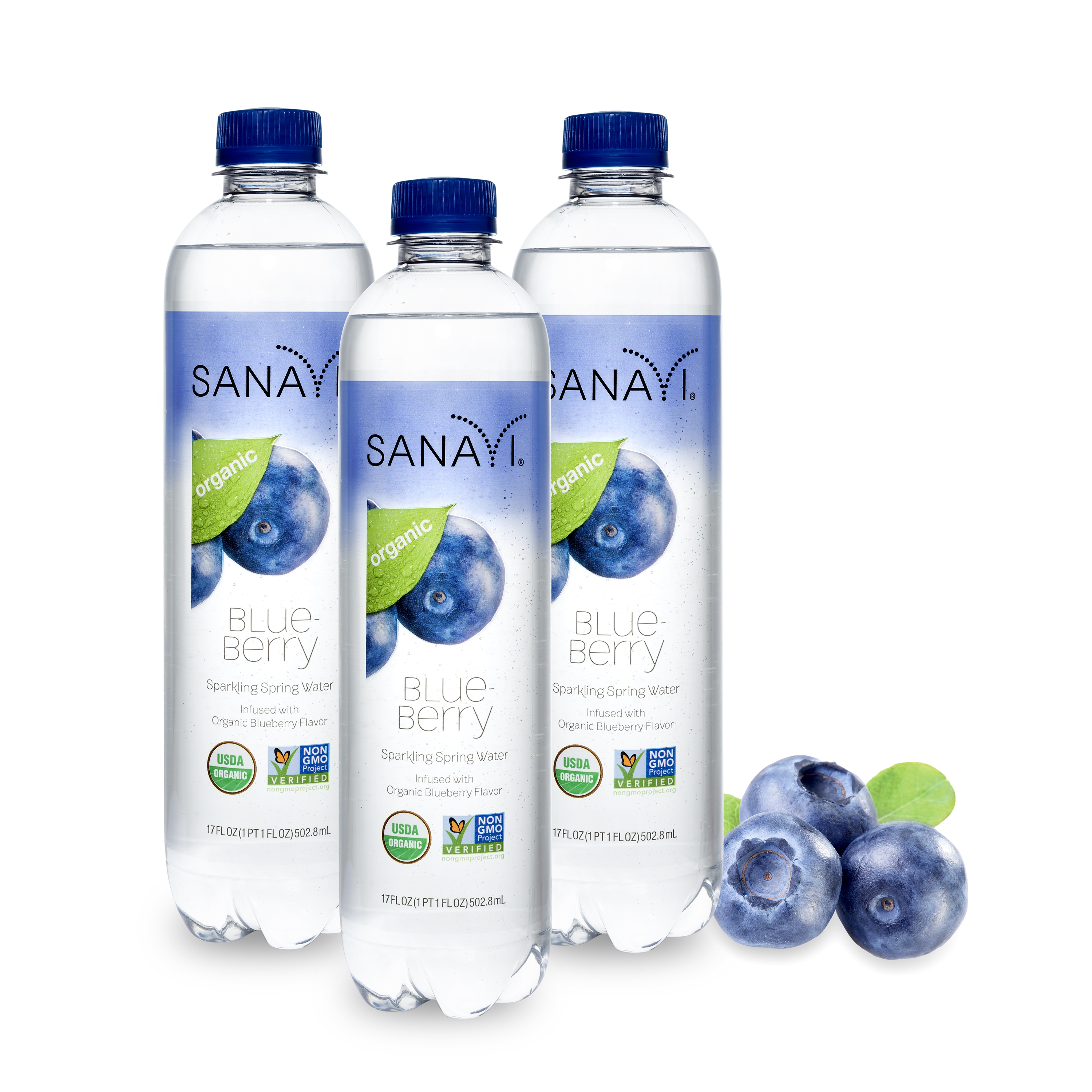 Sanavi Blueberry Sparkling Spring Water, 17 oz (3 Pack)